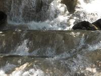 Climbing Dunns River Falls