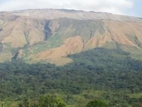 Mount Cameroon Tours