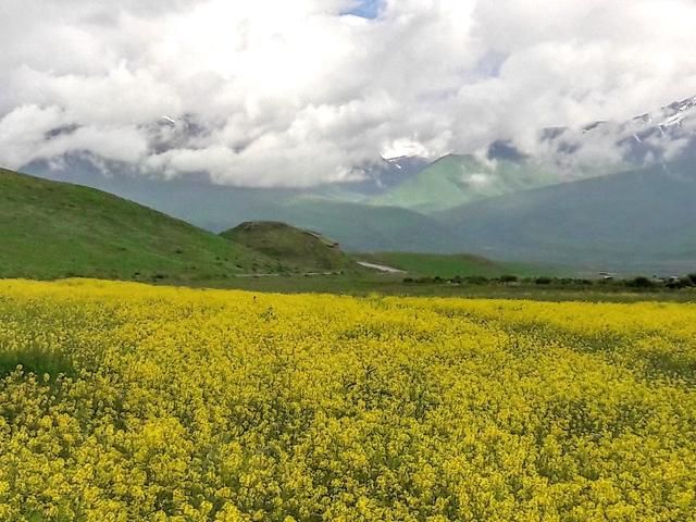 Self-Drive Kyrgyzstan Photos