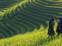 5 Days 4 Nights Hanoi - Halong - Sapa Tour