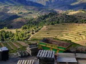 Wines of Catalunya: DOQ Priorat Fotos