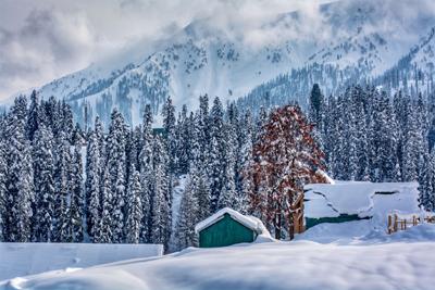 Kashmir Skiing Package Photos