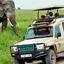 Budget Safari Kubwa Five