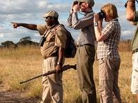 Walking Safari Tarangire Tanzania Kubwa Five