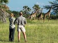 Watching Wildlife Kubwa Five Safaris