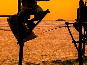 Life of Sri Lanka Tour Package Photos