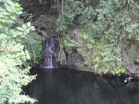 One Day Trip To Kilimanjaro - Marangu Route