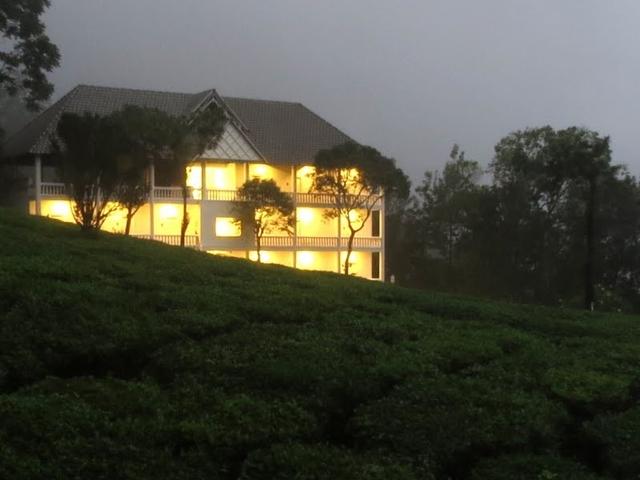 Munnar: Relaxing Tea Estates in Kerala Photos