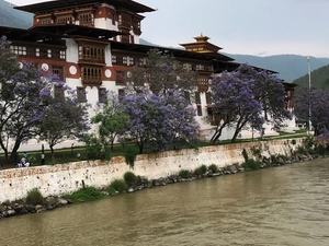 Land of Thunder Dragon - Phuentsholing,Thimphu And Paro
