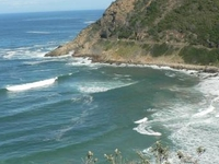 Garden Route Guided Tour - Cape Town to Port Elizabeth