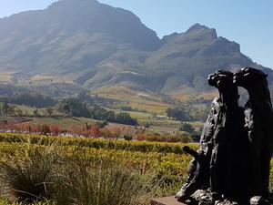 Private Cape Winelands Chauffeur Drive Photos