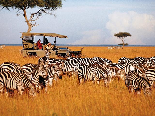 Tanzania & Kenya Lodge Safari Photos