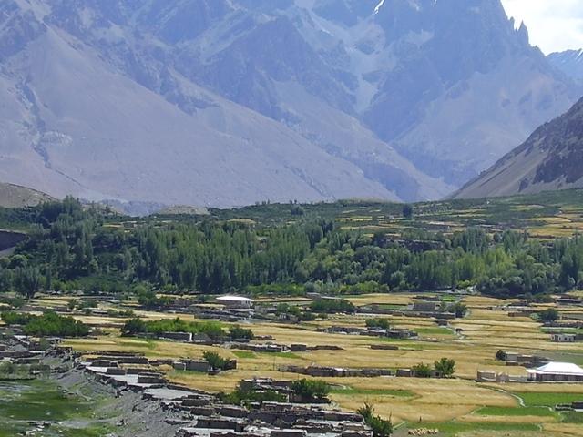 Yak Safari Shimshal Pass Pakistan Photos