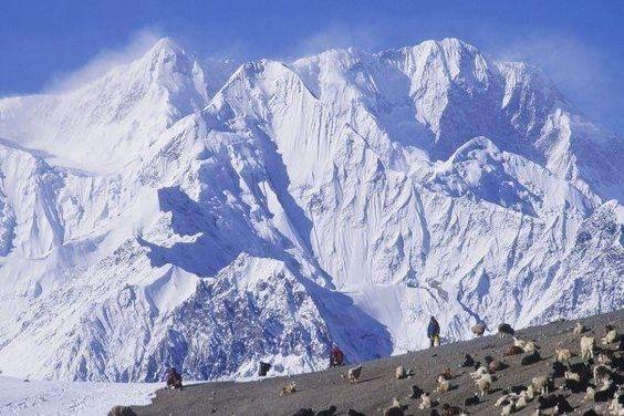 Trek Nanga Parbat Round Trek Over Mazeno Pass (5,377m) Photos