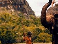 4 Nights Special Mini Tour - Sri Lanka