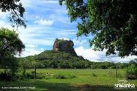 Dreamland Travels-srilanka