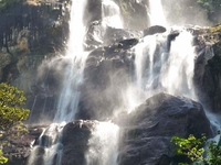 Mikumi National Park & Udzungwa Mountains Safari