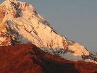 Discover Gangtok & Darjeeling