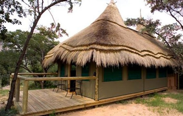Wildside Tented Safari Camp - Entabeni Game Reserve Photos