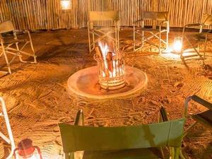 Kruger Park Africa on Foot Fotos
