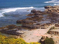 Israel Port Tours