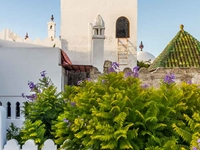 Private Guided Day Tour of Tangier