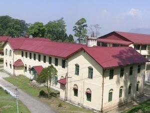 Darjeeling Kalimpong Gangtok 5N 6D Tour Package Fotos