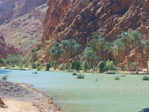 Wadi Shab (4WD)-Coastal Trek :Muscat Tours Photos