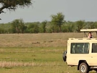 Africansafariconnection 20190605 0012