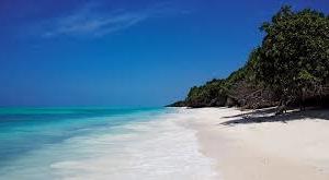 The Zanizibar Beach Holiday