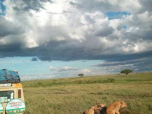 3 Days Amazing Lodge Safaris Photos