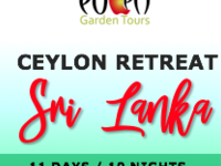 Ceylon Retreat Holiday