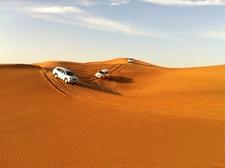 Sand Safari