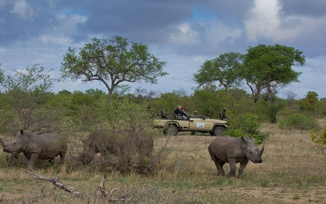 3 Night Private Villa - Private Reserve Kruger National Park Photos