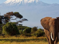 6 Days Mount Kilimanjaro Trekking, Rongai Route