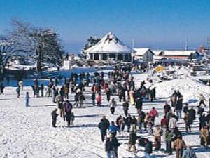 Weekend Delight in Shimla Fotos