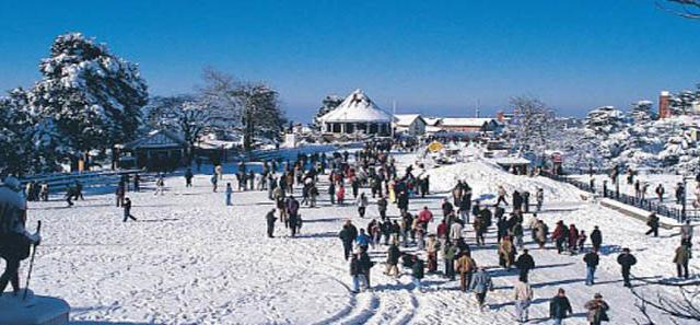Weekend Delight in Shimla Photos