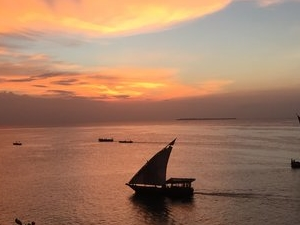 14 Days The Road to Zanzibar Photos