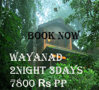 Wayanadpackagetour