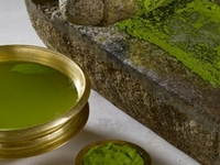 Body Detoxification by Ayurveda