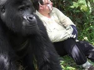 3 Days 2 Nights Gorilla Trekking Fotos