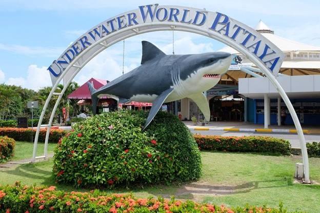 PATTAYA: Day Tour Under Water World Pattaya Photos