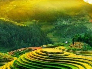 Ha Noi - Sapa - Ha Long Bay - Ninh Binh 7Days Package Fotos