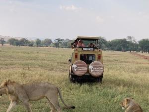 6-Days Camping Safari Tanzania Fotos