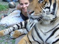 Thailand With The Tygr