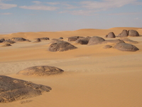 Baharia Oasis
