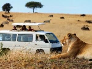 Masai Mara 2 Day Safari