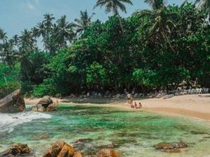 Best of Sri lanka in 5 days! Photos