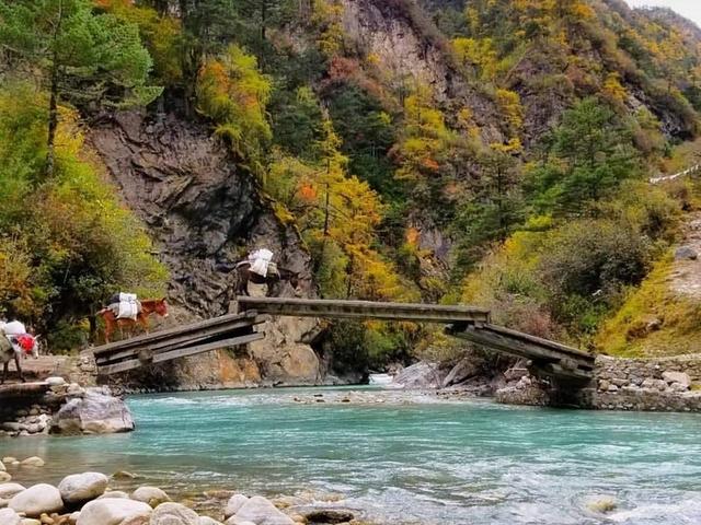 Bhutanese Escape Photos