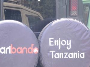 2 Day Tanzania Lodge Safari to Tarangire and Ngorongoro Photos